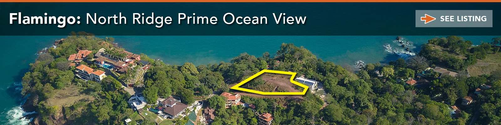 Flamingo North Ridge Ocean-View Lot
