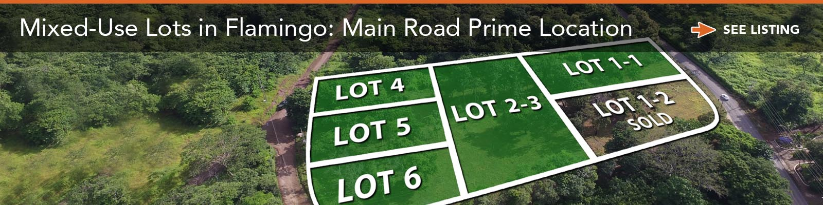 Mixed-Use Lots in Flamingo: Main Road Prime Location
