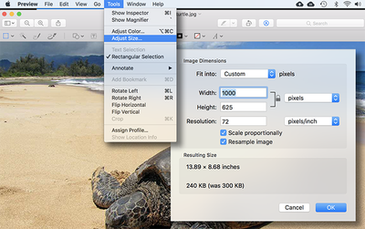 How to reduce listing picture file size for uploading to Costa Rica's MLS
