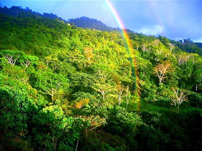 The Raniy Season in Guanacaste, Costa Rica