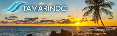 Tamarindo Beach Town